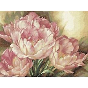 Набор для вышивки крестом Dimensions 35175 Tulip Trio