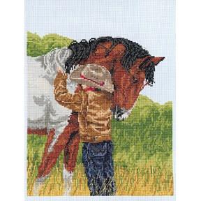 Набор для вышивания Janlynn 008-0209 Horse фото