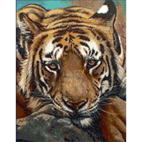 Набор для вышивания Kustom Krafts JW-005 Siberian Tiger фото