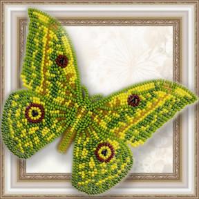 Набор для вышивки бисером бабочки на прозрачной основе Вдохновение Ауривиллиус Трирамис BGP-032
