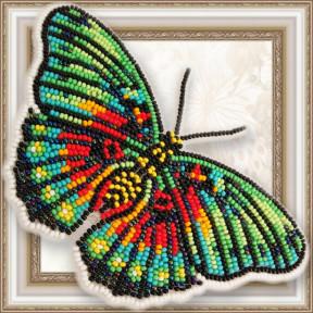 Набор для вышивки бисером бабочки на прозрачной основе Вдохновение Euphaedra edwardsi BGP-063