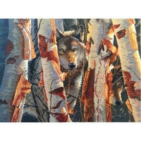 """Набор для вышивания крестом Classic Design """"Лесной страж"""" 4495"""