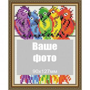 Попугаи ArtSolo Набор паспарту для фото АТ6308