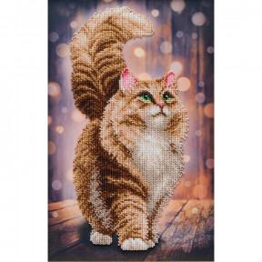 Мечтательный кот Набор для вышивания бисером ВДВ ТН-1342
