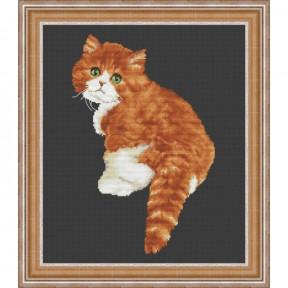 """Набор для вышивания крестиком OLanTa  """"Милашка кот""""  VN-177"""