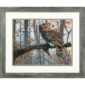 Набор для вышивания Dimensions 70-35311 Wise Owl
