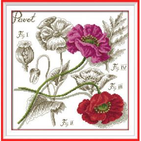 Ботаника. Маки Набор для вышивания крестом с печатью на ткани NKF H 527/5